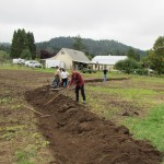 Permaculture Short Courses